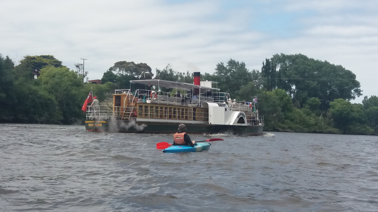 New Zealand's Only Steam Powered Paddle Wheeler Passes A Kayak